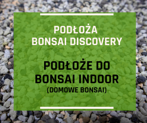Podłoże do bonsai indoor